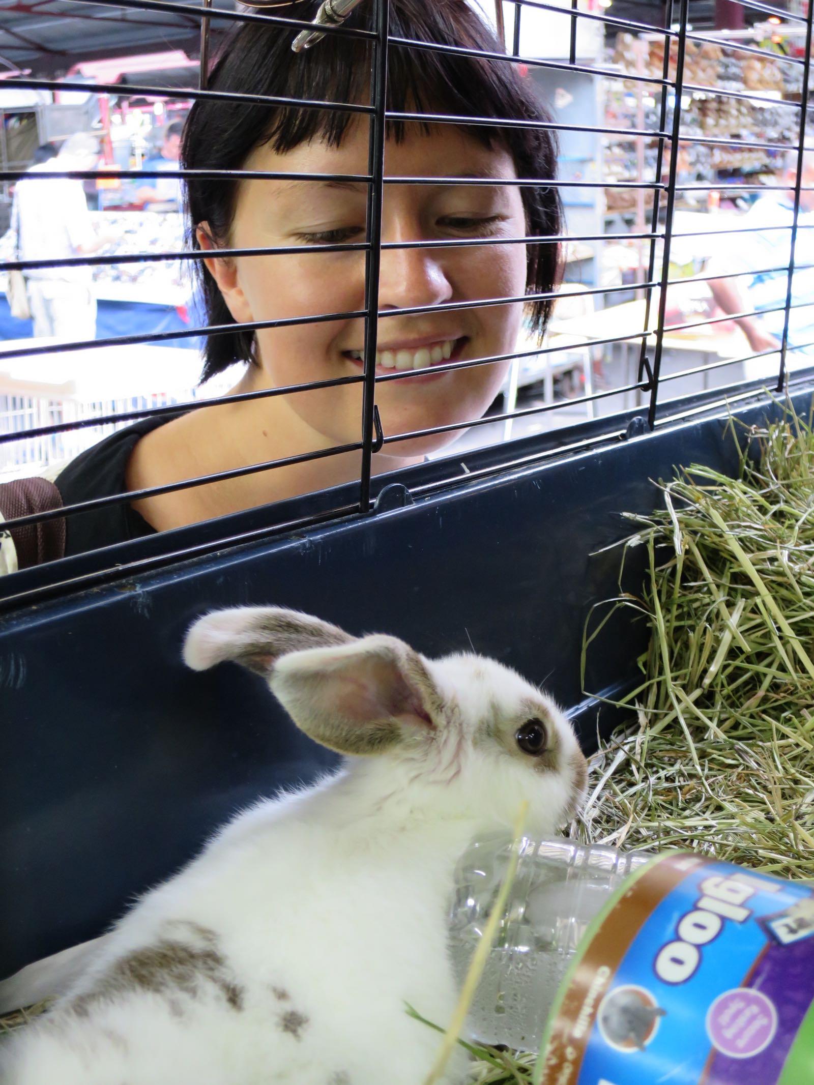 Queen Victoria Marketilla oli myös eläinkauppa (pupuja!)