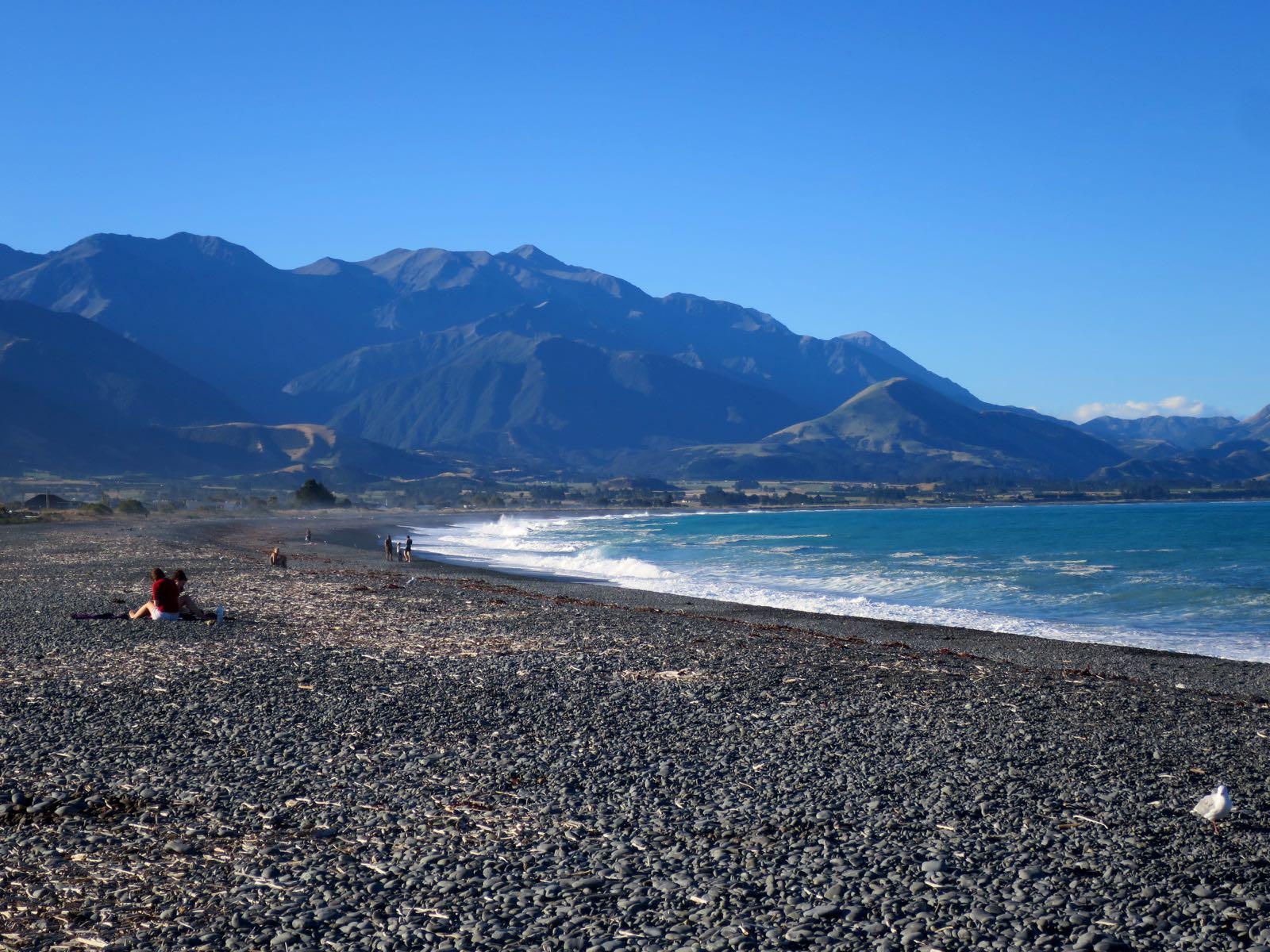 Kaikouran rannan aallot olivat vähän liian suuret uimista ajatellen