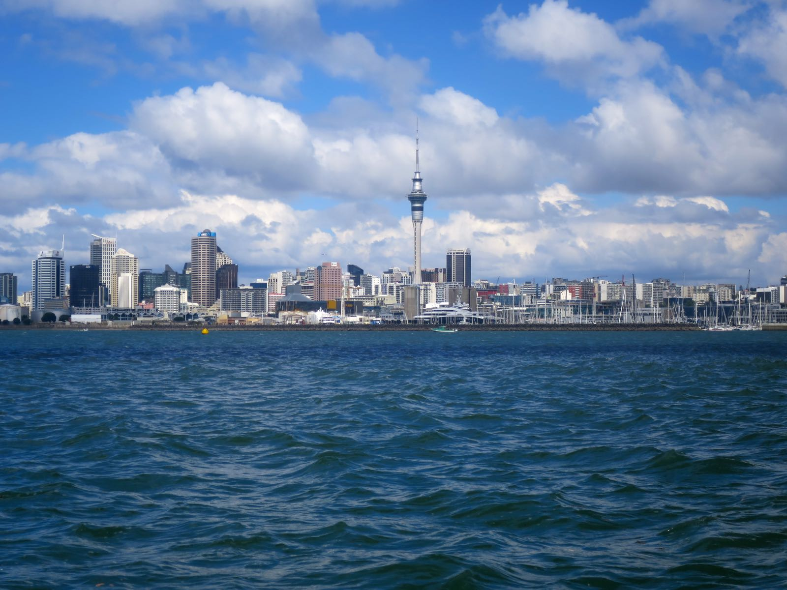 Auckland veneestä kuvattuna