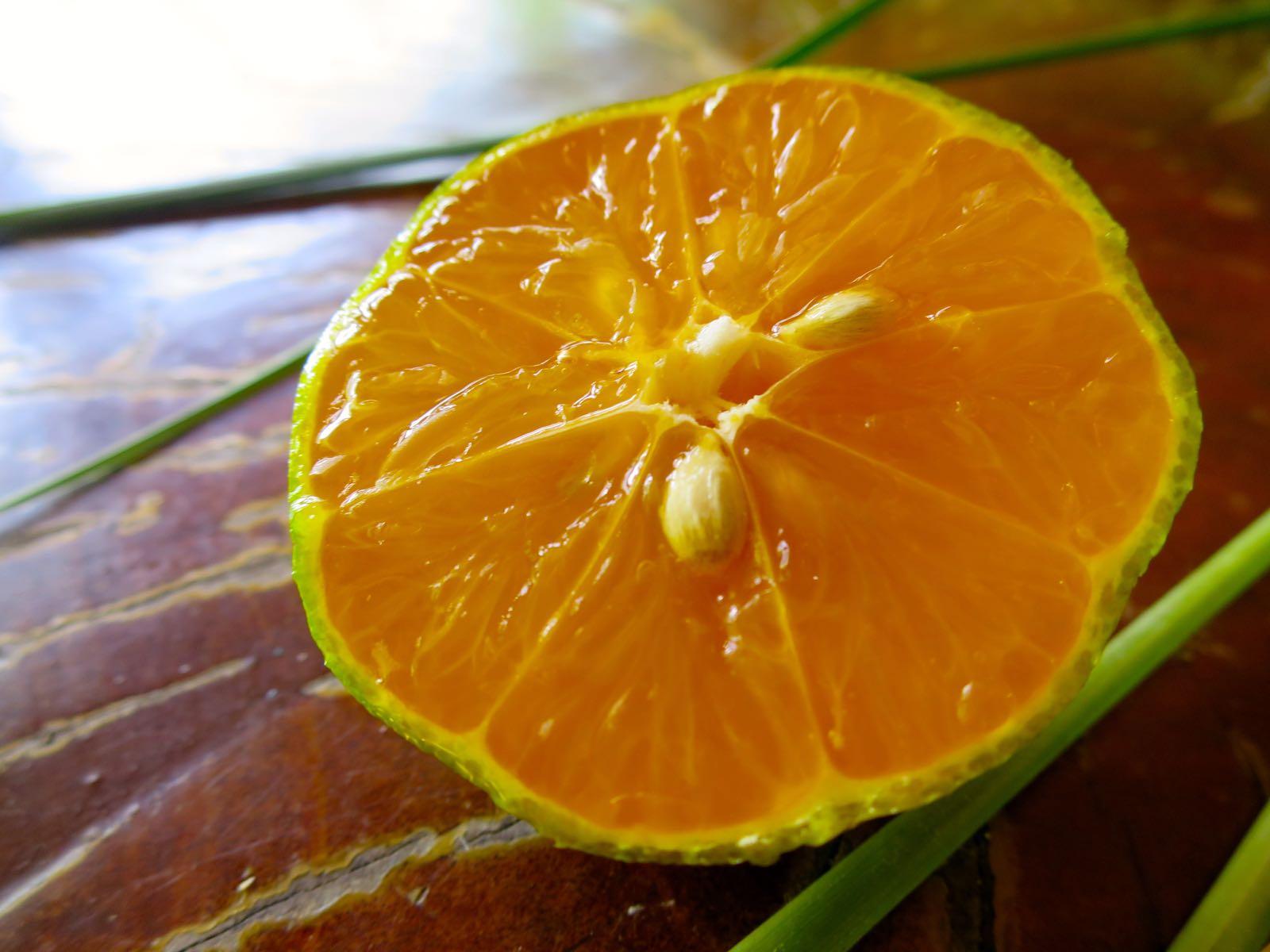 Tämä on sitruuna, ei mandariini (hassua)